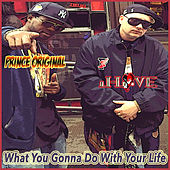 What You Gonna Do With Your Life by Prince Original