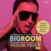 Bigroom House Fever, Vol. 3 by Various Artists