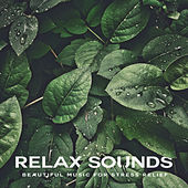 Relax Sounds de Various Artists