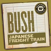 Japanese Freight Train by Bush