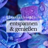 Klassische Musik zum Entspannen und Genießen von Various Artists