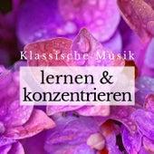 Klassische Musik Entspannung zum Lernen und Konzentrieren de Various Artists