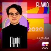 Human von Flavio