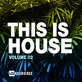 This Is House, Vol. 02 di Various Artists