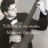 Tribute to the Beatles de Manuel Gonzalez