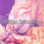 39 Urban Storms Peace de Thunderstorm Sleep