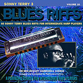 Sonny Terry Blues Riffs 3, Vol. 20 by Ben Hewlett