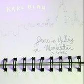 Snow is Falling in Manhattan by Karl Blau