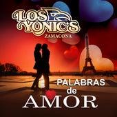 Palabras De Amor by Los Yonics