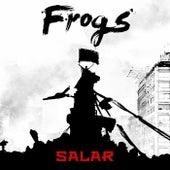 Salar de The Frogs