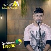 Cortando o Trecho by André Moralles