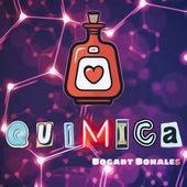 Quimica von Bogart Bonales
