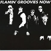 Now by The Flamin' Groovies
