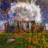 44 Will of the Mind de Meditation Awareness
