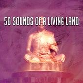 56 Sounds of a Living Land de Meditation Spa
