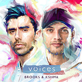 Voices (feat. TZAR) by Brooks