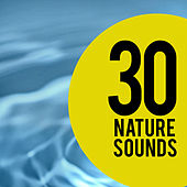 30 Nature Sounds by Nature Sounds (1)