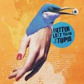 Wild Slide (Remixes) de Better Lost Than Stupid