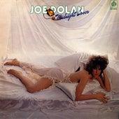 Mysterious Lady by Joe Dolan