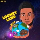 LOONEY LAND von Looney K