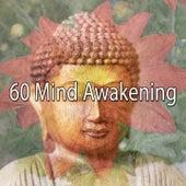 60 Mind Awakening by Deep Sleep Meditation