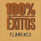 100% Éxitos - Flamenco de Various Artists