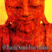 69 Peaceful Sounds from Outdoors de Meditación Música Ambiente