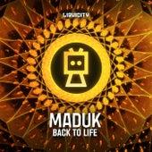 Back To Life de Maduk