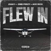 Flew In von Ziggy