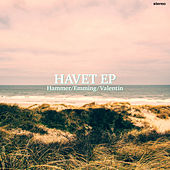 HAVET by Hammer
