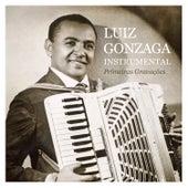 Primeiras Gravações Instrumental de Luiz Gonzaga