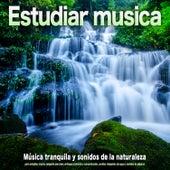 Estudiar musica: Música tranquila y sonidos de la naturaleza  para estudiar, música relajante para leer, enfoque profundo y concentración, sonidos relajantes de agua y sonidos de pájaros de Musica para Concentrarse