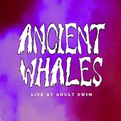 Live at Adult Swim by Ancient Whales