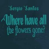 Where Have All the Flowers Gone von Sergio Santos
