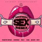 Sex (Remix) von Hozwal