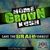 Save the Brain Forrest von Homegrown Kush