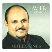 Reflexiones by Javier Rosales