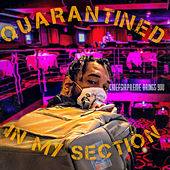 QUARANTINED IN MY SECTION by Chiefsirpreme