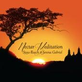 Nectar Meditation de Steve Roach