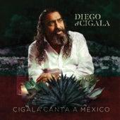 Cigala Canta a México de Diego El Cigala
