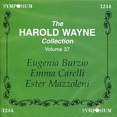 The Harold Wayne Collection, Vol. 37 (1906-1910) by Various Artists