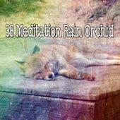 38 Meditation Rain Orchid van Rain Sounds (2)