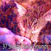 37 Sleepy Rainy Sounds by Rain Sounds and White Noise