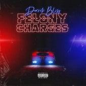 Felony Charges von Derrik Bliss