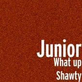 What up Shawty de Junior