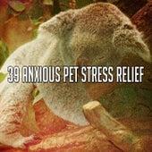 39 Anxious Pet Stress Relief van Rain Sounds (2)