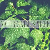 Nature Atmosphere van Rain Sounds (2)