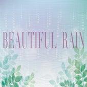Beautiful Rain van Rain Sounds (2)
