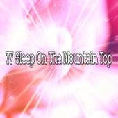 77 Sleep on the Mountain Top de Nature Sound Series