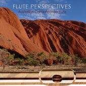 Flute Perspectives Volume 1 von Derek Jones